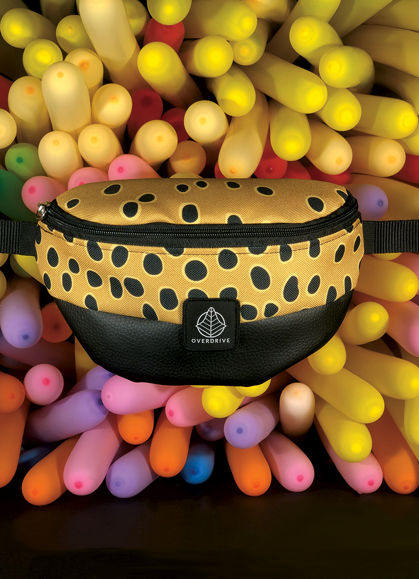 FANNY PACK AGRIS
